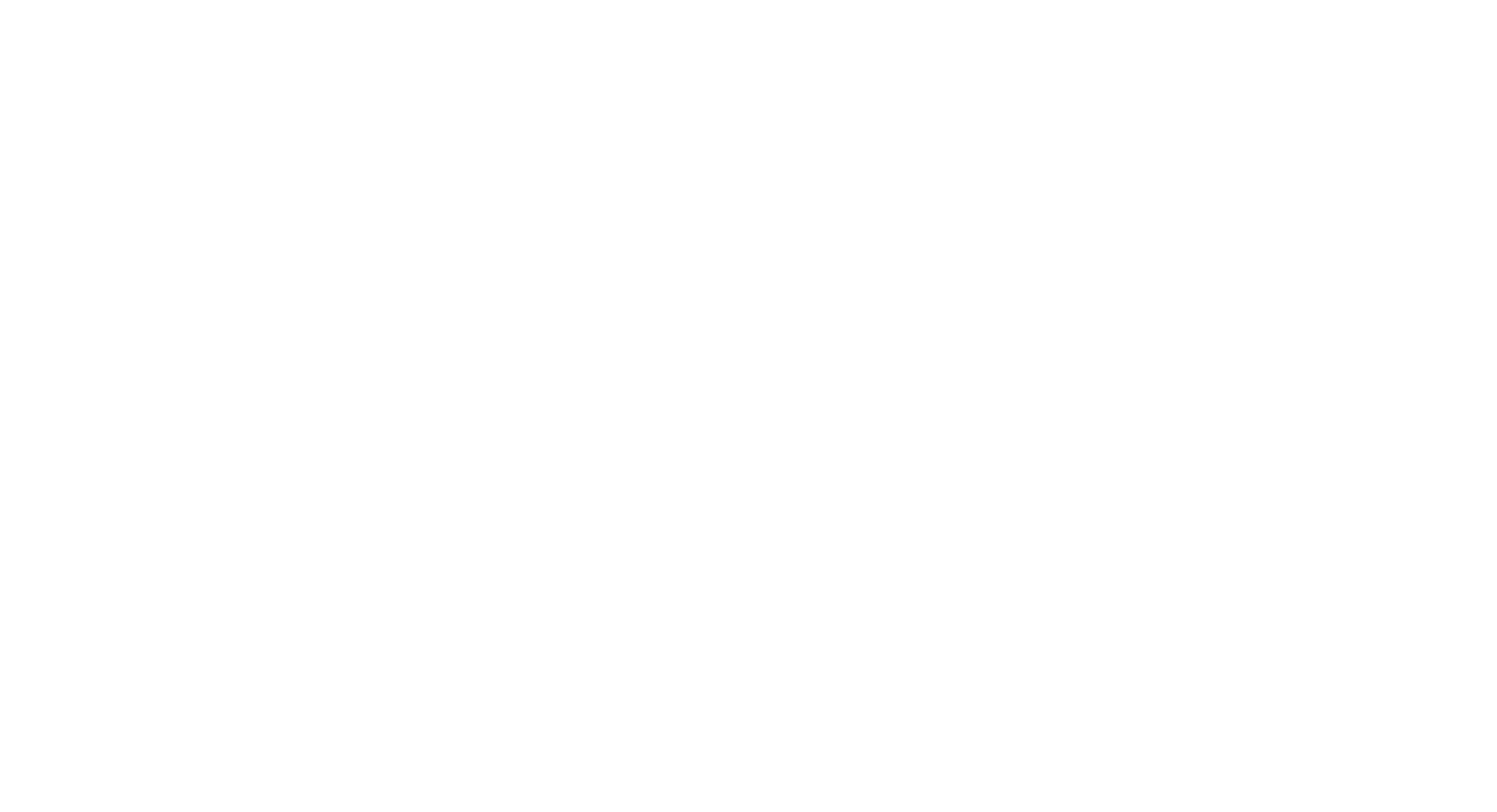 45North Transparent white